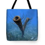 A Species Of Pirania, A Primitive Tote Bag by Walter Myers