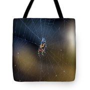 A Spider And Her Web Tote Bag