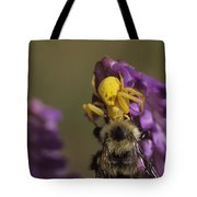 A Spider Eats A Bumblebee While Perched Tote Bag