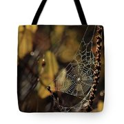 A Spiders Creation Tote Bag