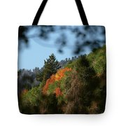 A Spot Of Fall Tote Bag