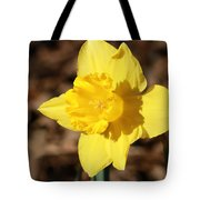 A Spring Blessing Tote Bag