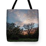 A Spring Evening Tote Bag