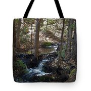 A Spring Moment Tote Bag