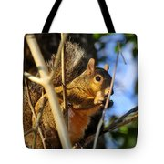 A Squirrel's Feist Tote Bag