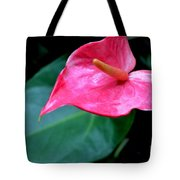 A Stand Alone Stand Out Tote Bag