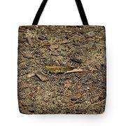 A Stranger In The Kingdom Tote Bag