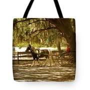 A Stroll In The Park Tote Bag