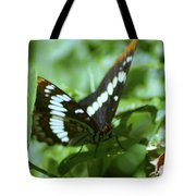 A Summer Butterfly  Tote Bag