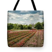 A Summer Dream Of Roses Tote Bag