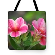 A Sunny Afternoon Tote Bag