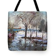 A Sunny Freezing Day Tote Bag