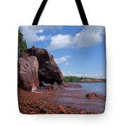 A Superior Red Rock Beach Tote Bag