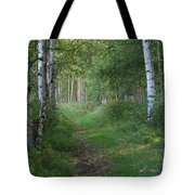 A Suspended Silence Where The Wild Things Are Tote Bag