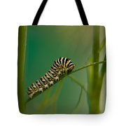 A Swallowtail Butterfly Caterpillar Tote Bag