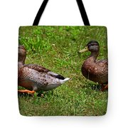 A Sweeping Romance Tote Bag