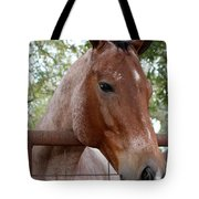 A Sweet Face Tote Bag
