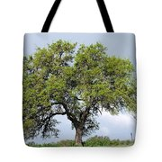 A Tale Of One Tree Tote Bag