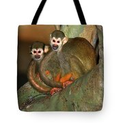 A Tale Of Two Tails Tote Bag