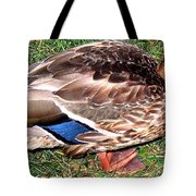A Tame Crow Tote Bag