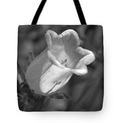 A Thing Of Beauty In Black And White Tote Bag