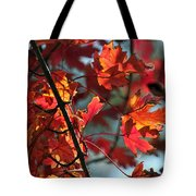 A Time For Every Season IIi In Watercolor Tote Bag