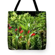 A Time To Discover Tote Bag