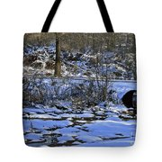 A Time To Thaw Tote Bag