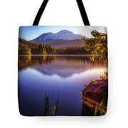 A Touch Of Gold Tote Bag