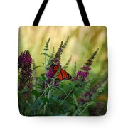 A Touch Of Orange Tote Bag