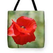 A Touch Of Sunlight... Tote Bag