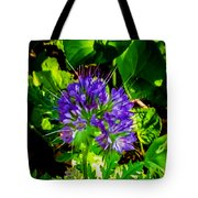 A Touch Of Violet Tote Bag