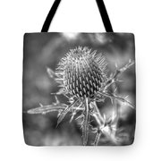 A Touchy Subject Tote Bag