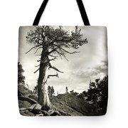 A Tough Life Tote Bag