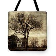 A Tree Along The Roadside Tote Bag