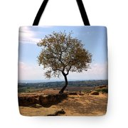 A Tree And A Rock Tote Bag