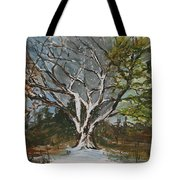 A Tree For All Seasons  Tote Bag