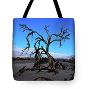 A Tree In An Arid Land Tote Bag
