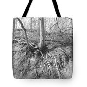 A Tree In Shiawassee Park, Living On The Edge Tote Bag