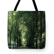 A Tree Lined Path Leads To Mad King Tote Bag
