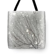 A Tree On The Beach #2 - Seaweed And Shells Tote Bag