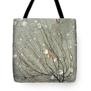 A Tree On The Beach - Sea Weed And Shells Tote Bag