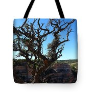 A Tree On The Edge Tote Bag