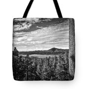 A Tree Stands Guard Over Big Bear Lake Tote Bag
