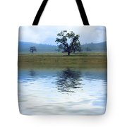 A Trees  Reflection Tote Bag