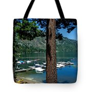 A Trees View Of Fallen Leaf Lake Tote Bag