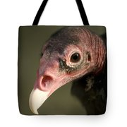 A Turkey Vulture At The Henry Doorly Tote Bag