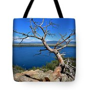 A Twisted View Tote Bag