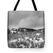 A Utah Winter Tote Bag