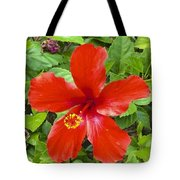 A Very Red Flower Tote Bag